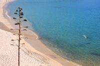 Corsica seaside